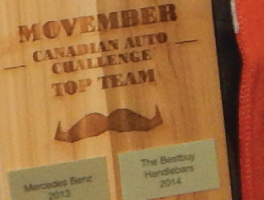 Bestbuy Places First in Movember 2014 Auto Industry Challenge
