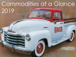 2019 Bestbuy Commodity Catalogue Download
